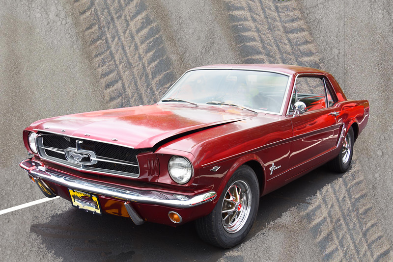 mustang 050617_5589 track