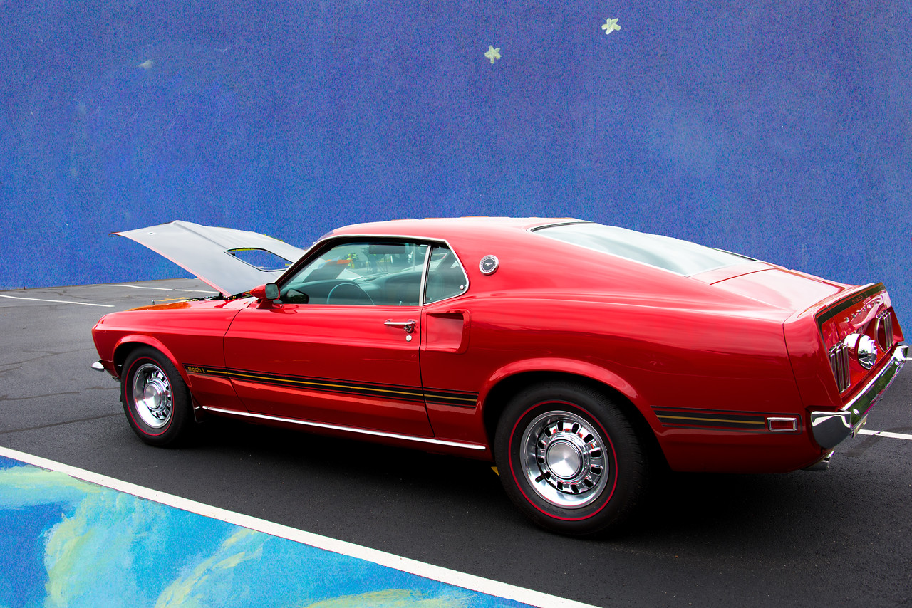 mustang 050317_5424 2 nght
