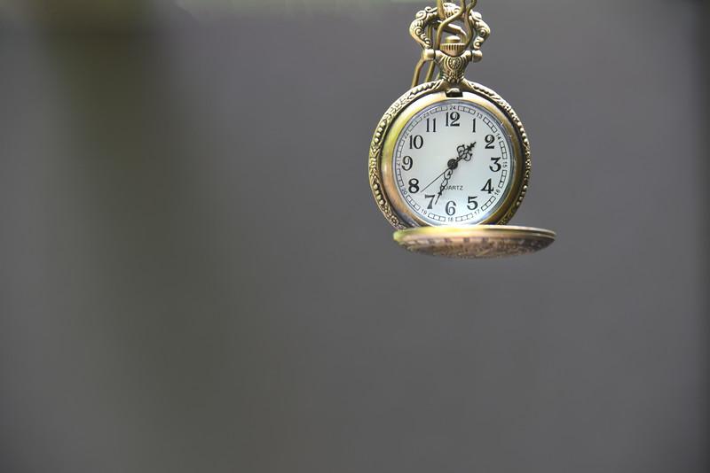 watch pocket 072617_6797