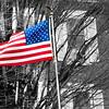 flag 022617_4670 sbw