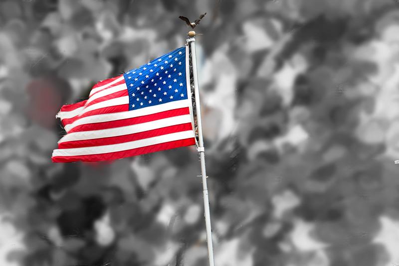 flag 022617_4670 silver