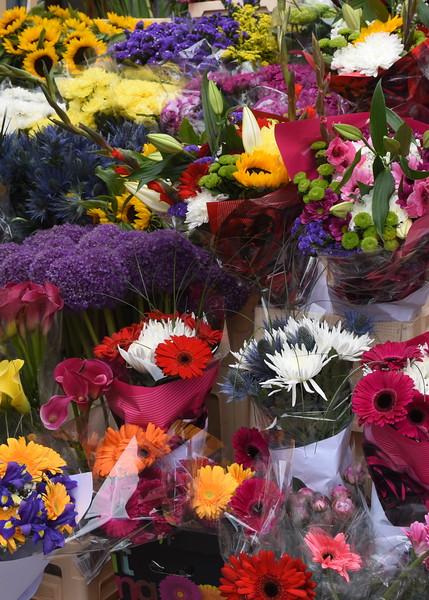 ire flowers 080615_6524 2