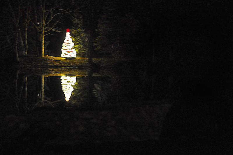 xmas tree lake 121215_0021