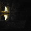 xmas tree lake  121215_0021 2