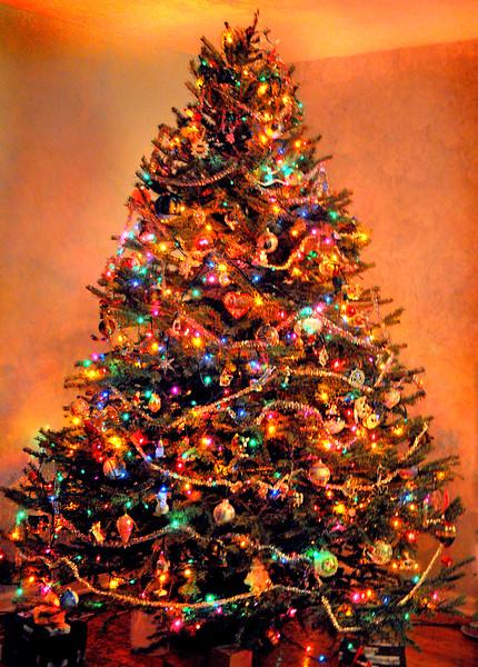 xmas tree 123111_0079 2