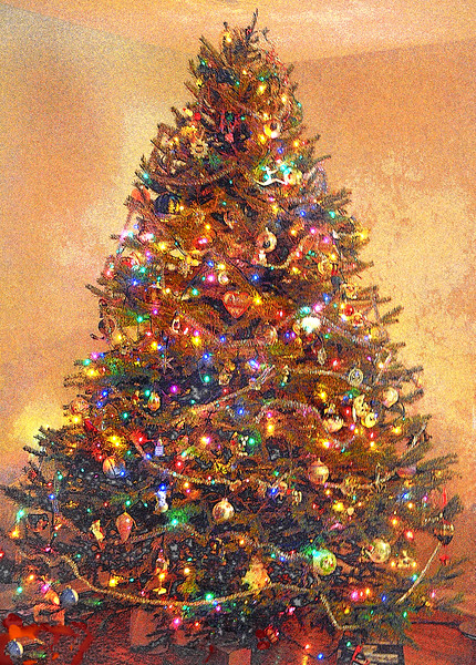 xmas tree 123111_0079 pen2
