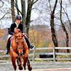 horse w rider blur_0211