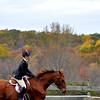 horse w rider blur_0216