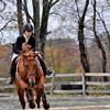 horse 102211_0211 2