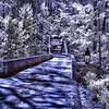 Bridge Infrd 041616 43