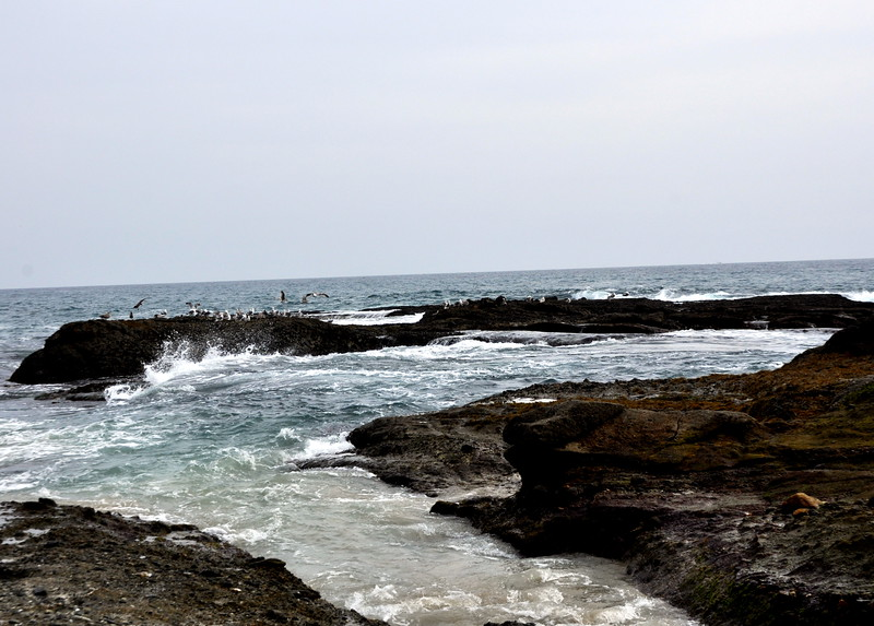 ocean 41714_0869