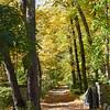 path 101015 _8514