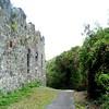 stone wall stjohn 041306 3089