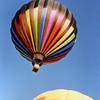 balloon 230