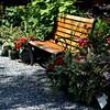 bench 061415 667_0516