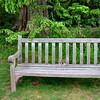 bench 051715_0605 2
