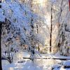 snow 90414 MCH 0777 2