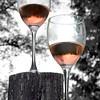 wine glasses 051715_0673 new years