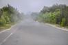 fog 060216_0015