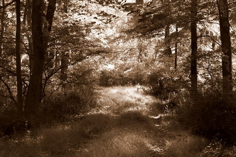 path 091915_7427 2 S