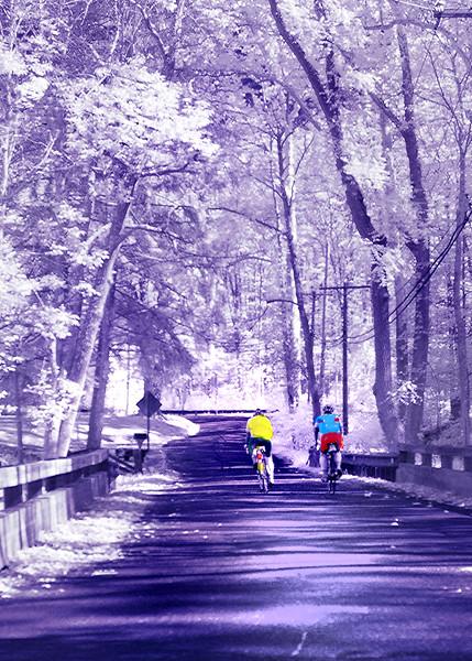 bikes Infr 101015 _0024 2
