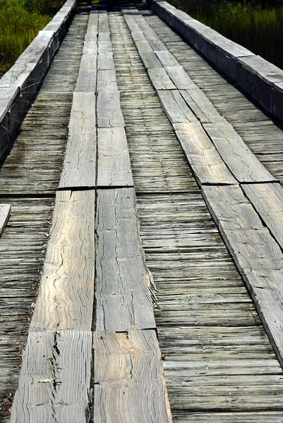 wooden bridge 081716_2937
