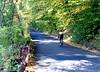 bike 101015 _8481 3