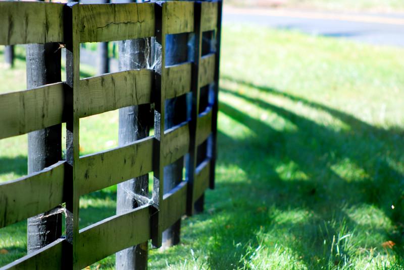 fence MCH 101015_2609