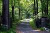 road 091915_7425