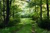 pathway 091915_7427