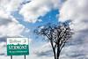 Sky Tree sign 022617_4722 2