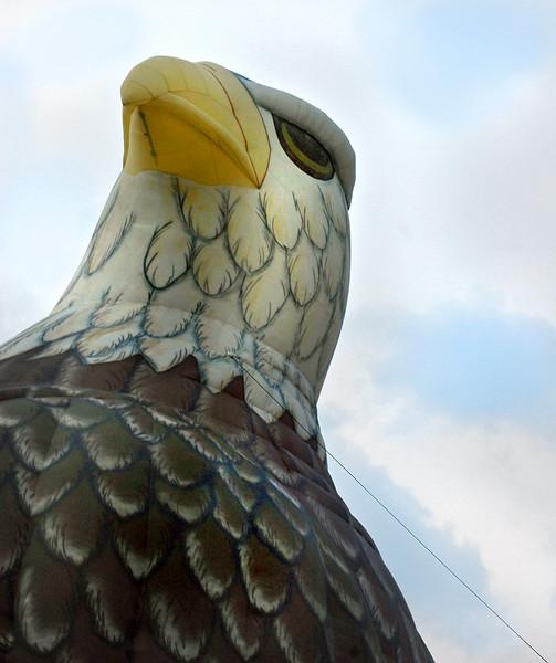 balloon eagle 070407_0103