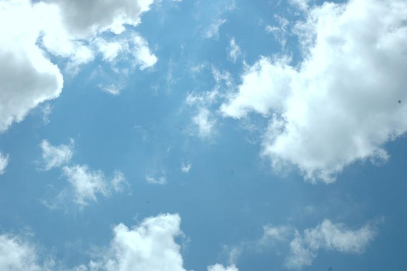 sky 62709 0180
