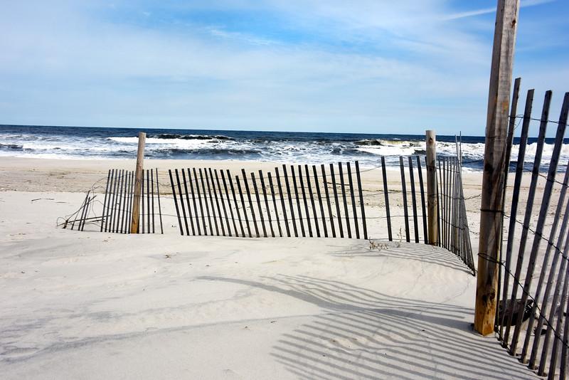 beach island park 030516_0775e