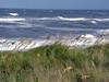 beach 91705 2352