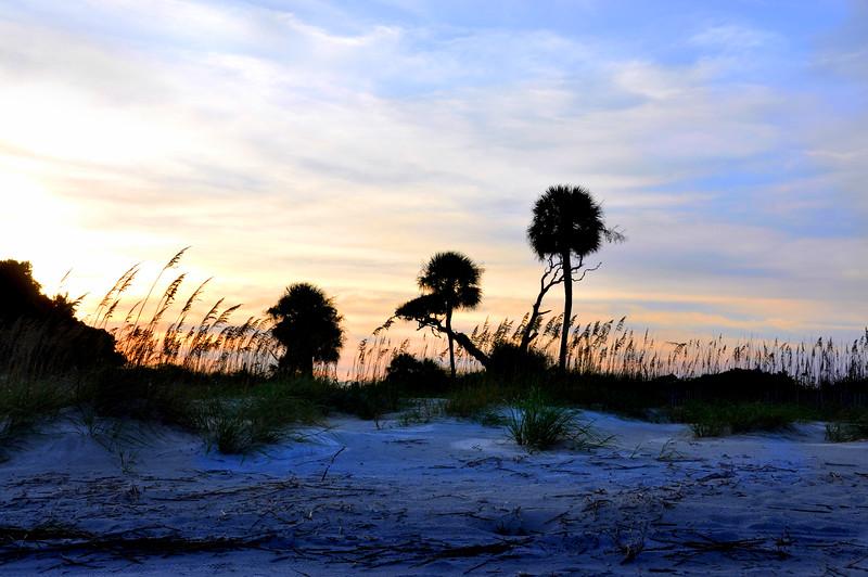 beach 81511_0359 2
