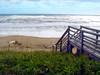beach 91705 2362 2