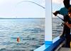 fishing 31804 2