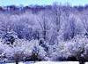 snow 111014_0718 2
