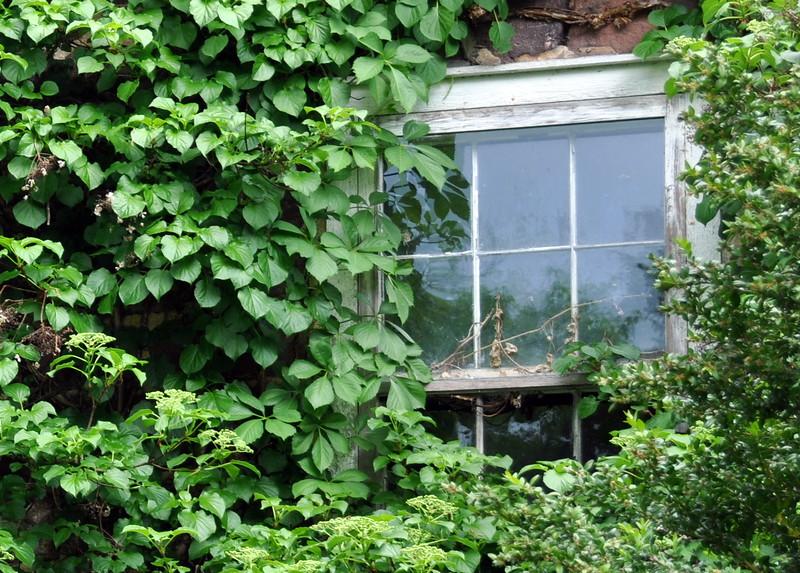 window 051715_0592 2