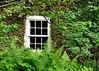 window 051715_0582