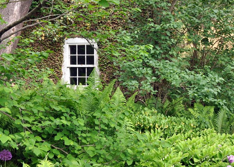 window 051715_0581
