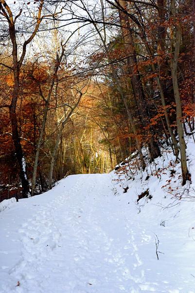 snow 012615_0298 2