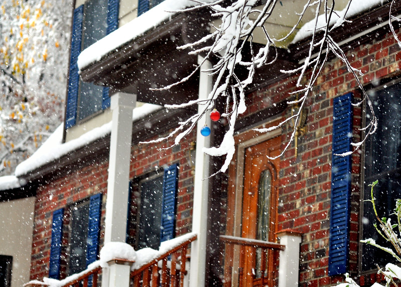 snow 102911_0051 2