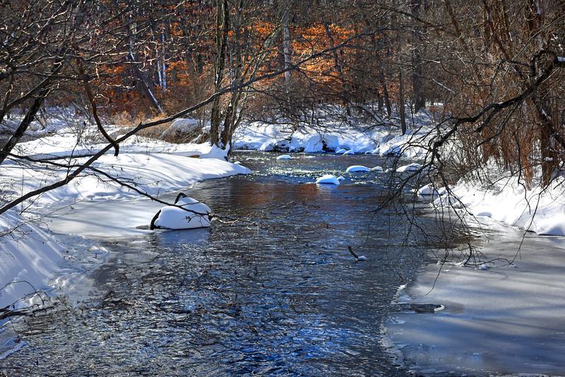 creek 012416_0207