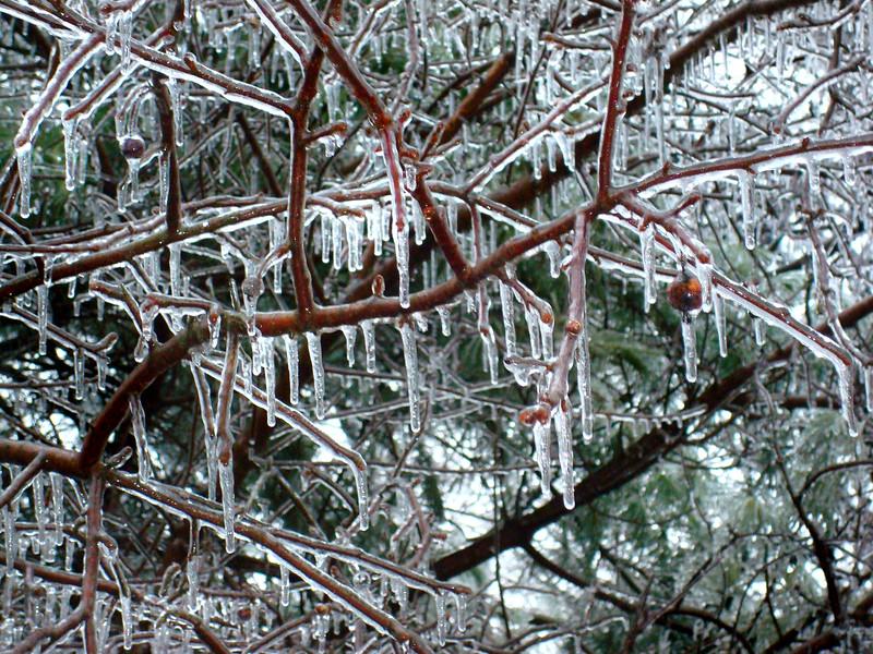 ice 20108 1015 2