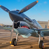 Curtiss P-40 Warhawk on display at the Wings Over Houston Airshow, held October 26-27, 2013.