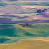 September - The Palouse, Washington State