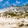 One of many sand dunes that can be found in and around Destin, Florida