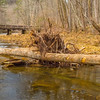 The old wooden bridge.  Shawnee State Park near Portsmouth.